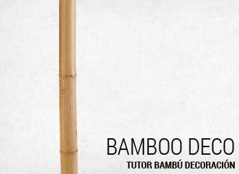 Tutor bambú decoración