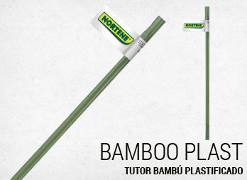 Tutor bambú plastificado