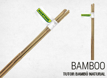 Tutor bambú natural
