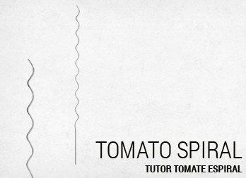 Ir con la cabeza alta entutorar su jard n nortene - Tutores para tomates ...